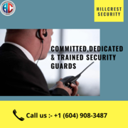 Do You Want A Service in Residential Security Richmond?